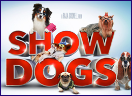 PWB - Show Dogs
